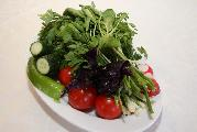 Bouquet  of  Greens, cucumber and tomato
